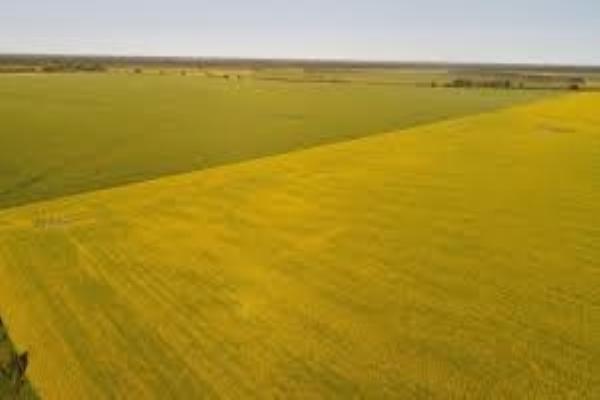 0 0 RD, Fort Saskatchewan