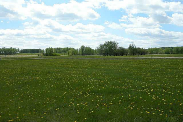 224 62002 TWP RD 462 A, Rural Wetaskiwin County