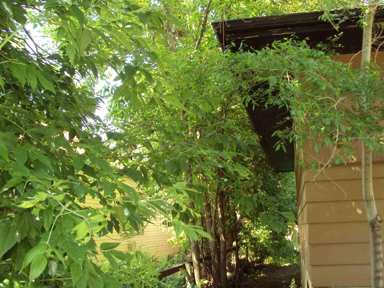 Listing E4203609 - Large Photo # 2
