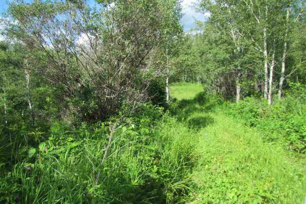 51111 Range Road 205, Rural Strathcona County