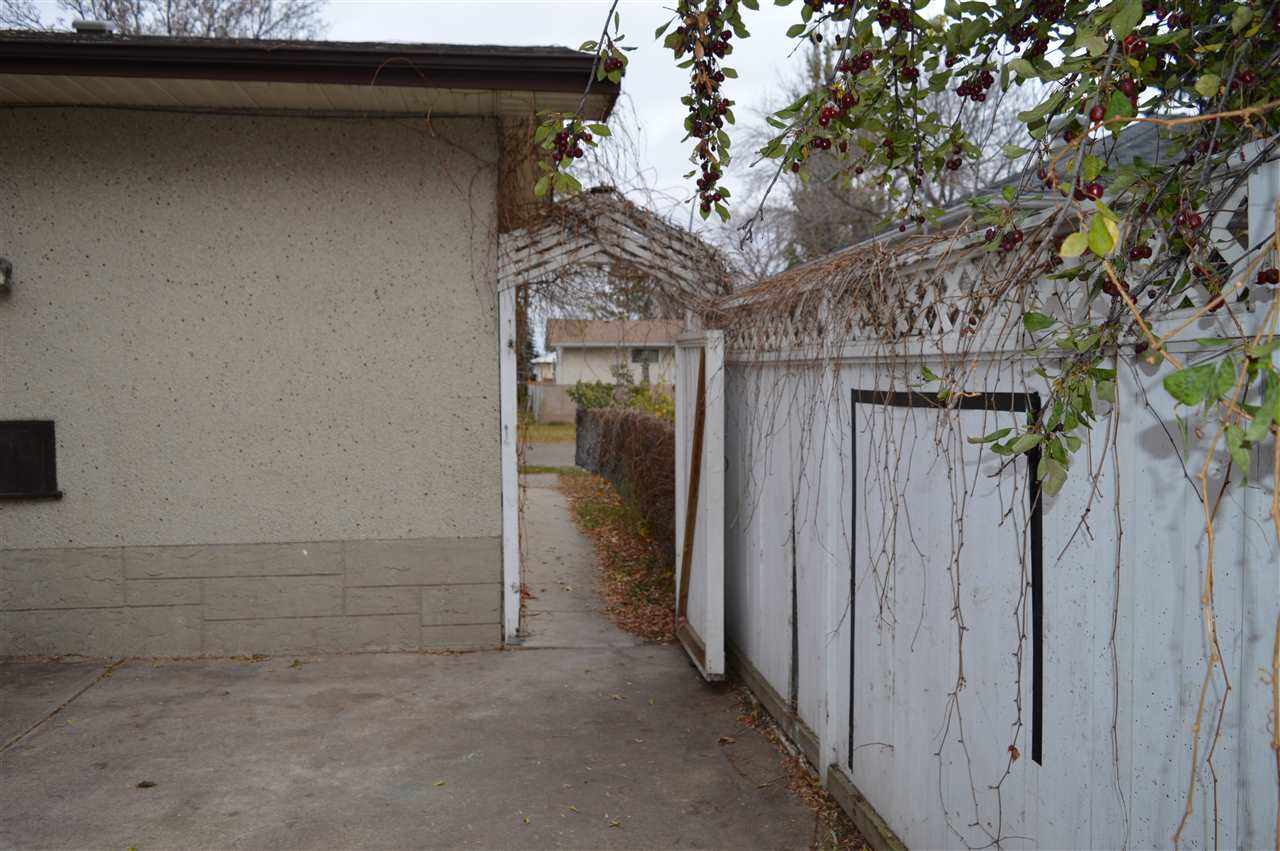 Listing E4218568 - Thumbmnail Photo # 33