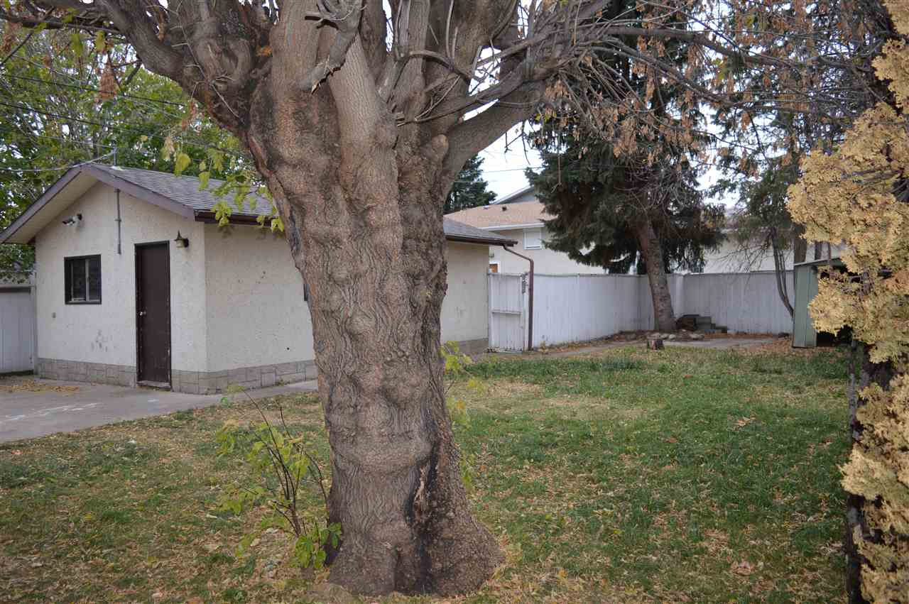 Listing E4218568 - Thumbmnail Photo # 41