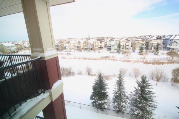 411 7021 SOUTH TERWILLEGAR Drive, Edmonton
