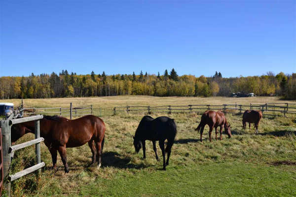 51263 RGE RD 223, Rural Strathcona County