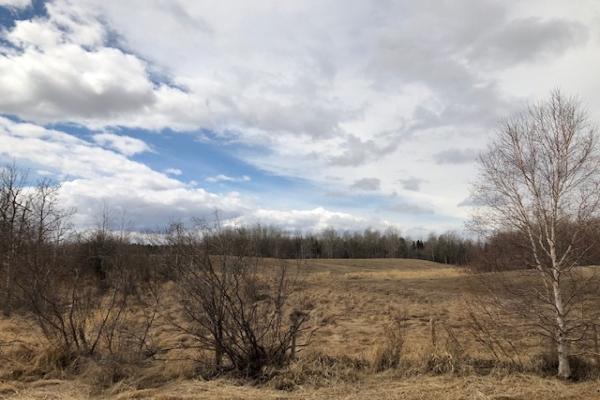 Twp 512 Range Rd 225, Rural Strathcona County