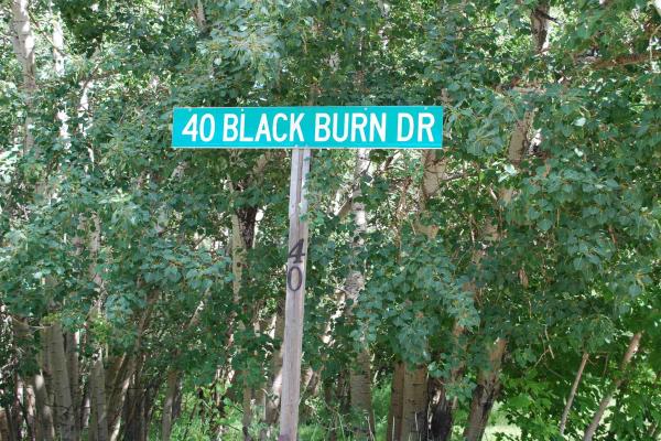 40 BLACKBURN Drive W, Edmonton