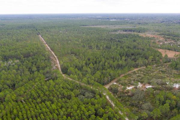 500 VOLUSIAN FOREST TRL, PIERSON