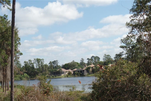 252 EAGLE ESTATES DR, DEBARY