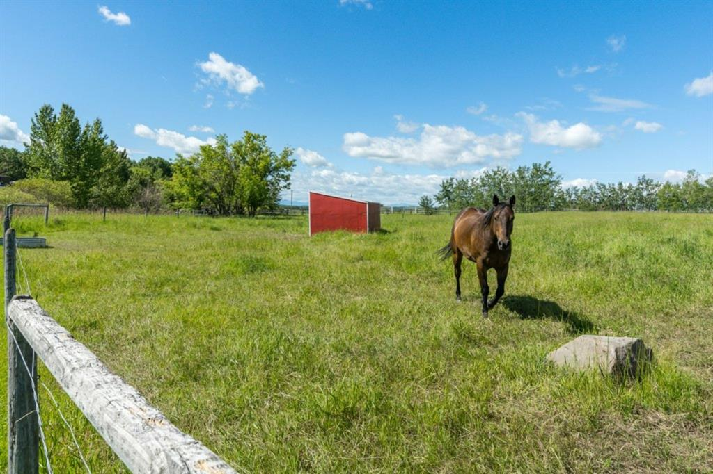 Listing A1015313 - Large Photo # 40