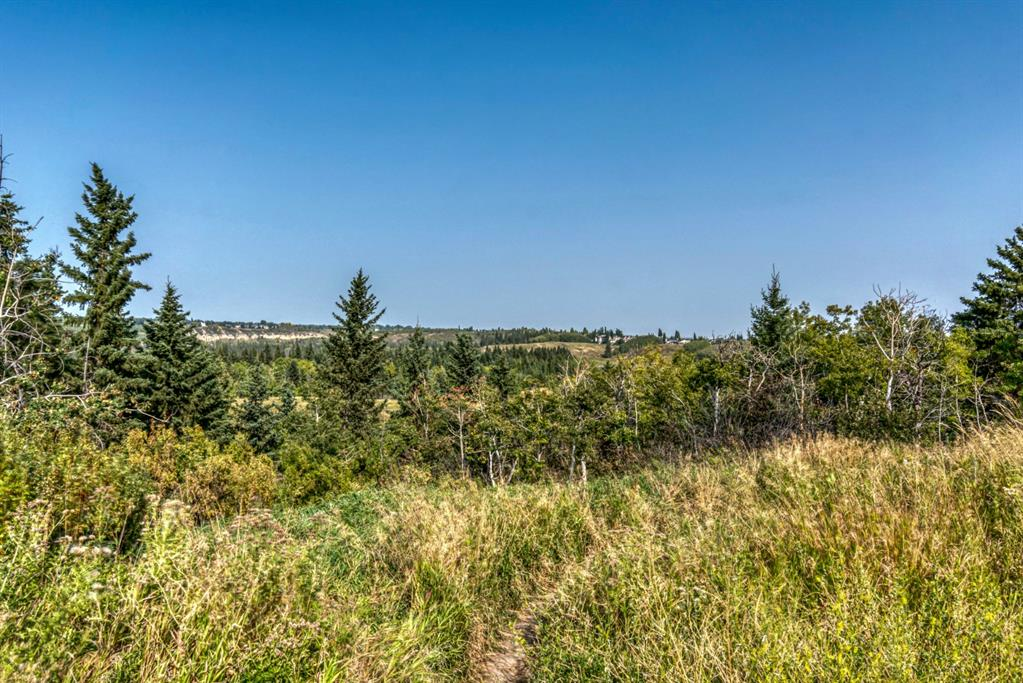 Listing A1033849 - Large Photo # 39