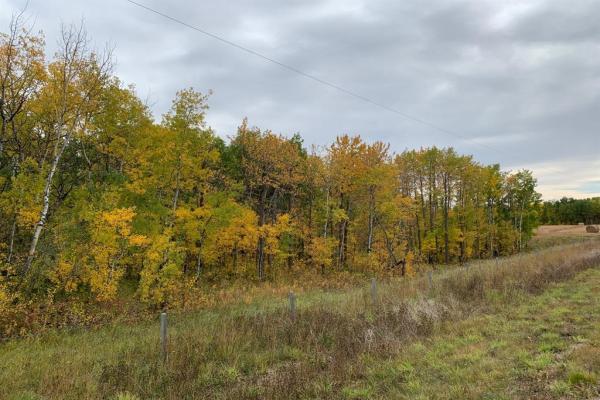 On Range Road 284, Rural Ponoka County