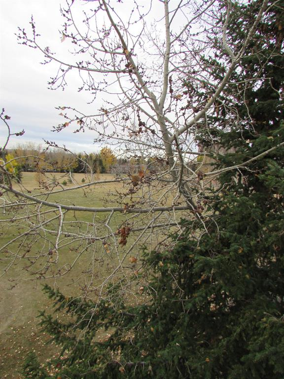 Listing A1039507 - Large Photo # 11