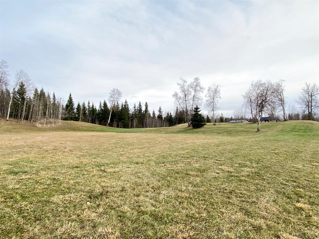 Listing A1047731 - Large Photo # 3