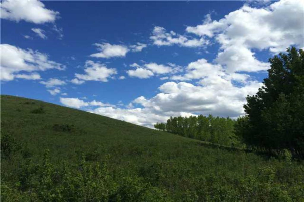 63 Rolling Acres Place, Rural Rocky View County