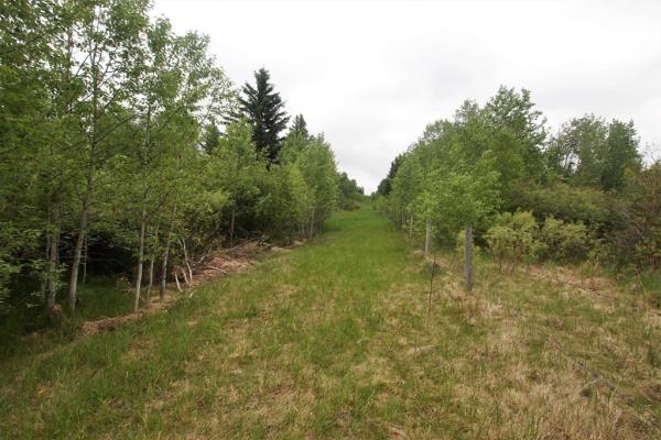 On  Range Road 2-3, Rural Lacombe County