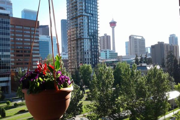 339 13 Avenue SW, Calgary