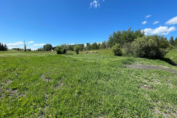 105 Willow Creek Heights, Rural Rocky View County