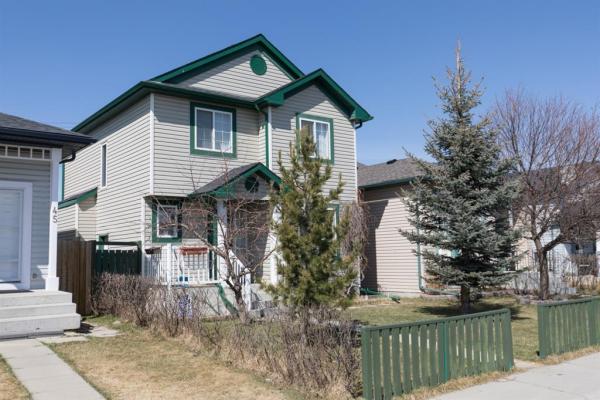 41 MARTINVALLEY Place NE, Calgary