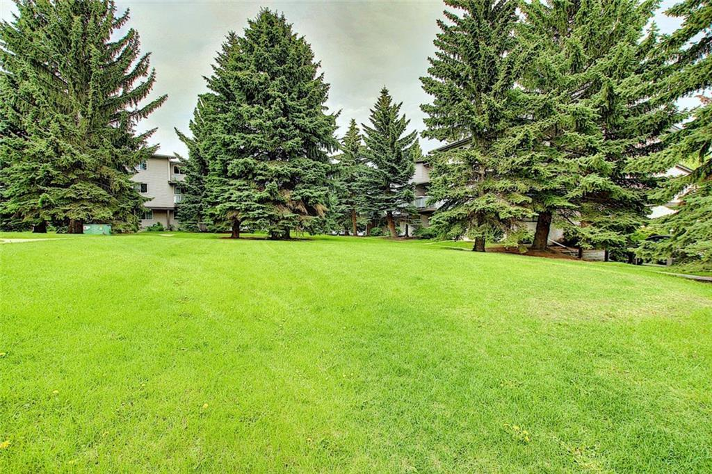 Listing A1100751 - Large Photo # 28