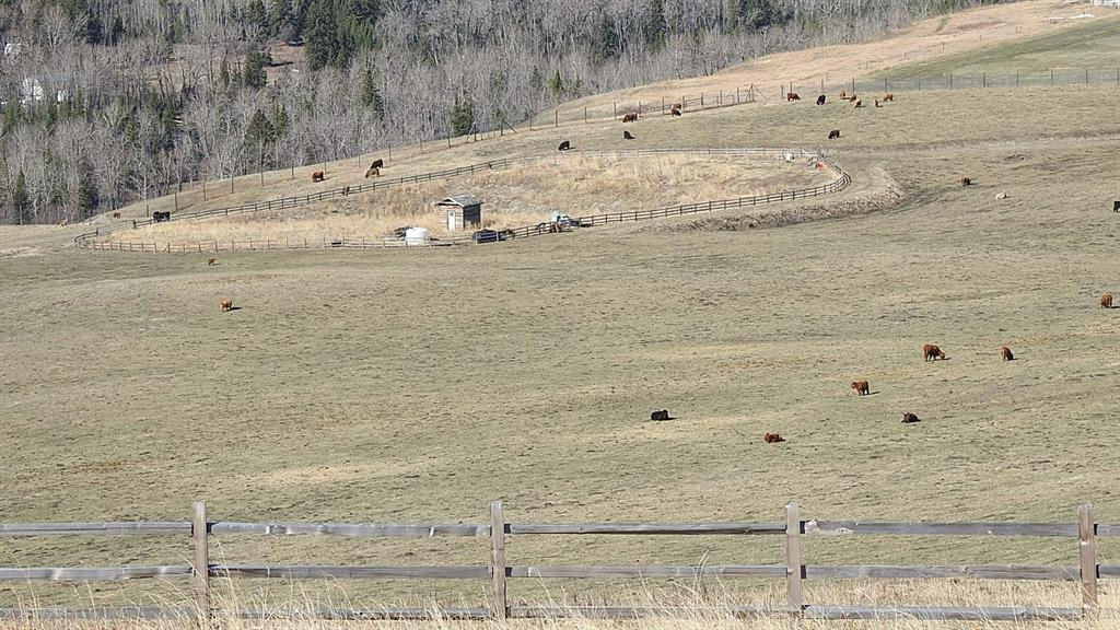 Listing A1101395 - Large Photo # 7