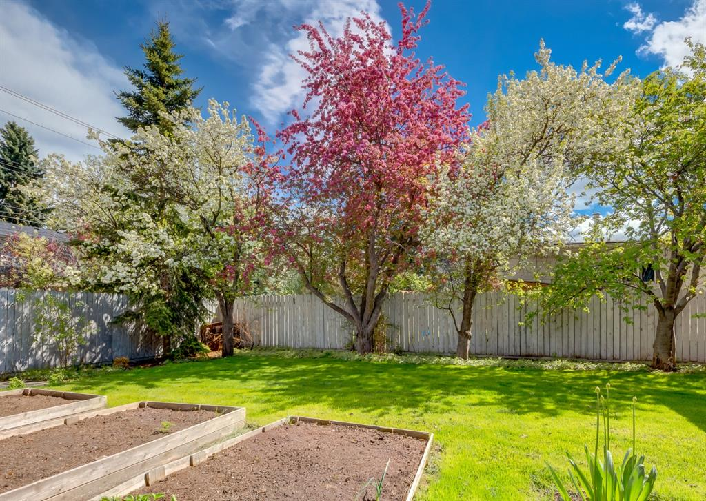 Listing A1113234 - Large Photo # 42