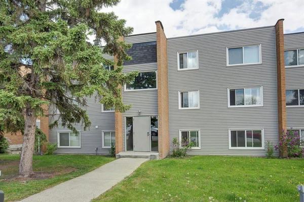 3522 44 Street SW, Calgary