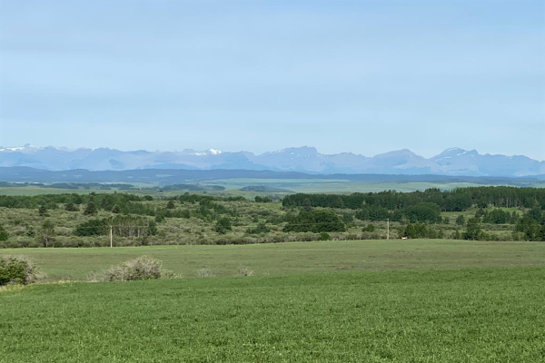 160 acres off Range Road 43, Rural Rocky View County