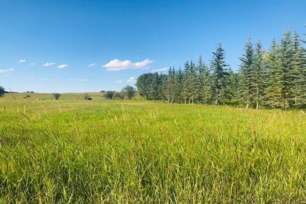 Lot 2 - 2190 Eagle Bend Place E, Rural Foothills County
