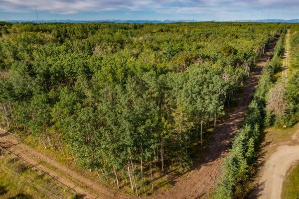 Lot 3 Range Road 33, Rural Rocky View County