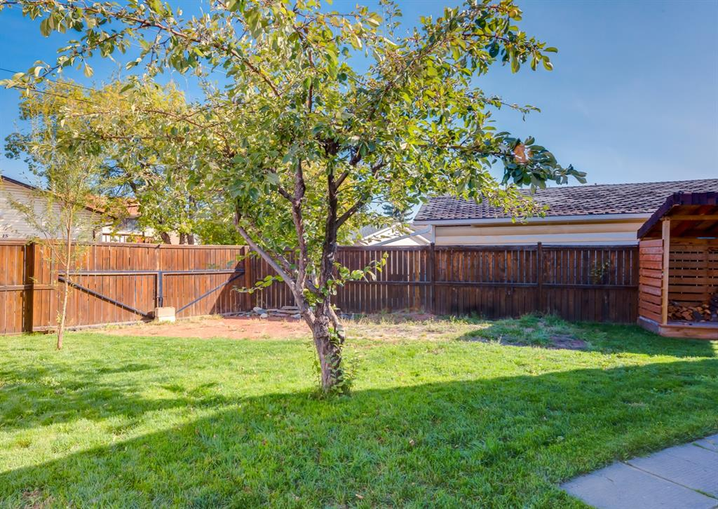 Listing A1146793 - Large Photo # 31