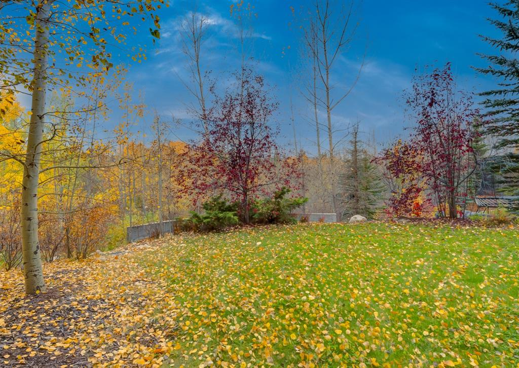 Listing A1153232 - Large Photo # 43