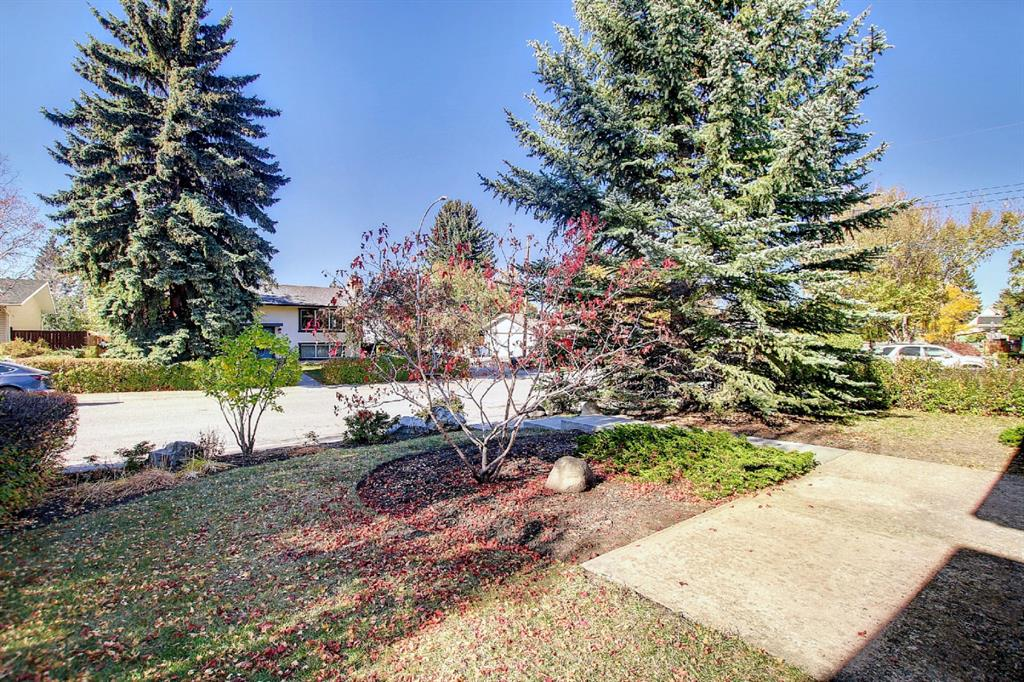 Listing A1153501 - Large Photo # 3