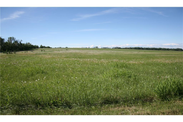 3 4141 Twp Rd 340, Rural Mountain View County