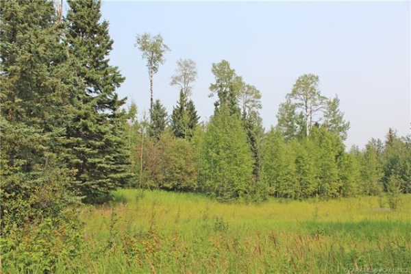 4 Forest Close, Rural Clearwater County