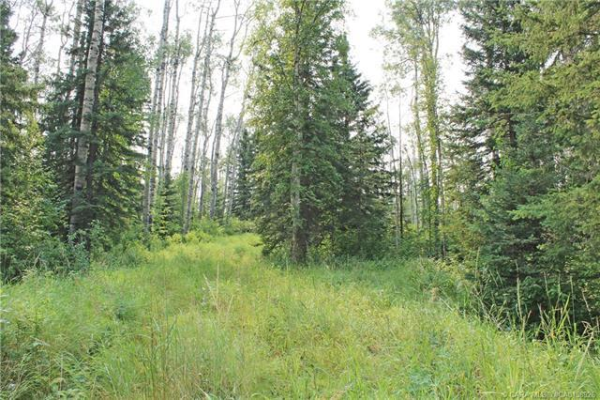 5 Sandhills Drive, Rural Clearwater County