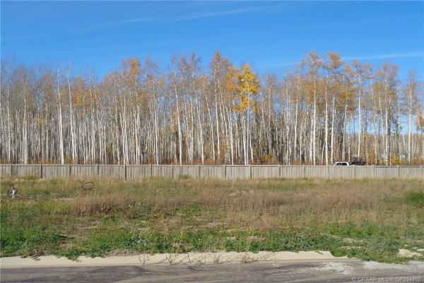 17 Bear Creek Drive, High Level