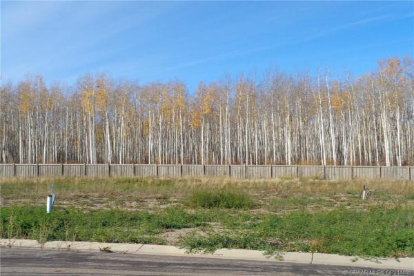 19 Bear Creek Drive, High Level