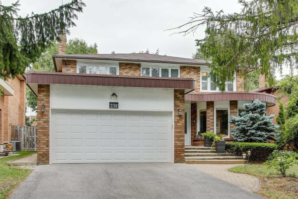 238 Fisherville Lower Rd, Toronto