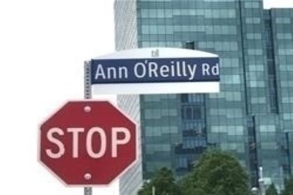 55 Ann Oreilly Rd E, Toronto
