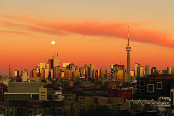 36 Lisgar St, Toronto