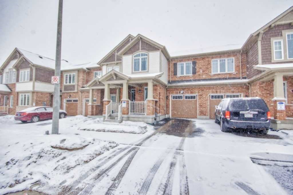 1127 Dragonfly Ave, Pickering