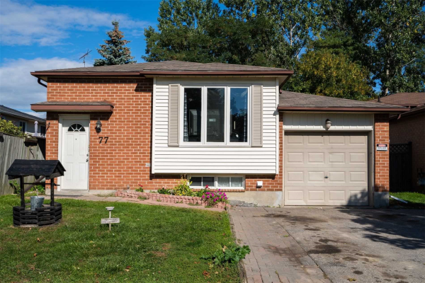 77 Birchfield Dr, Clarington