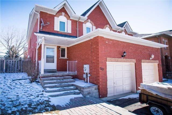50 Widdifield Ave, Newmarket