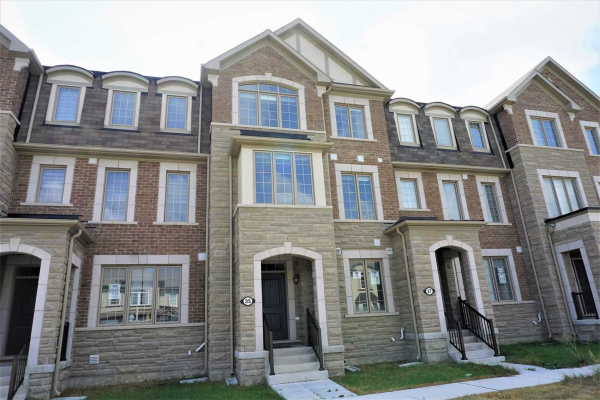 35 Casely Ave, Richmond Hill