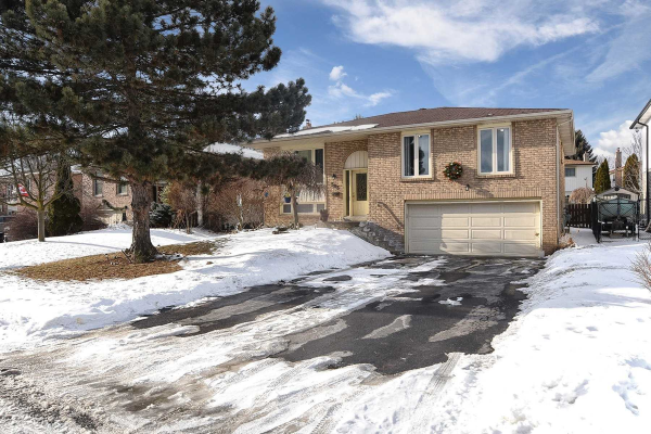 583 Haines Rd W, Newmarket