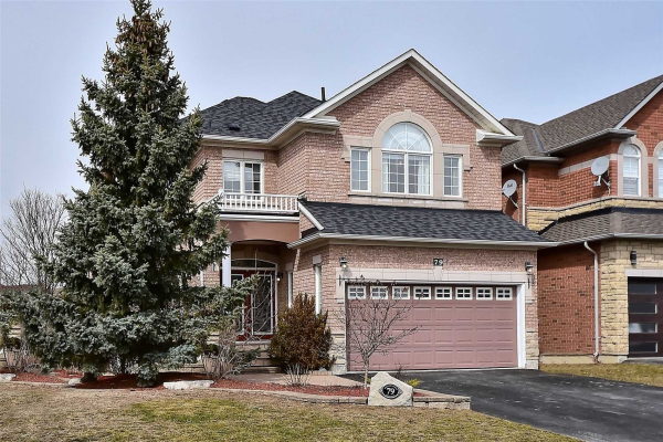 79 Mallard Marsh Cres, Richmond Hill