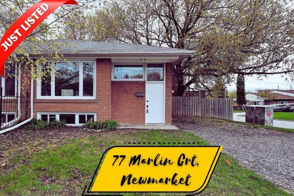 77 Marlin Crt, Newmarket