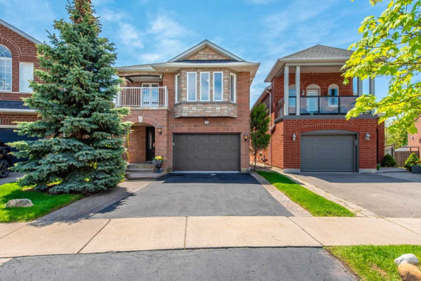 308 St Joan Of Arc Ave, Vaughan