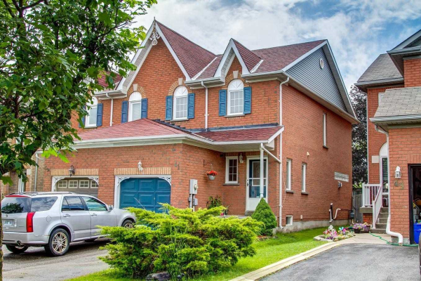41 Widdifield Ave, Newmarket