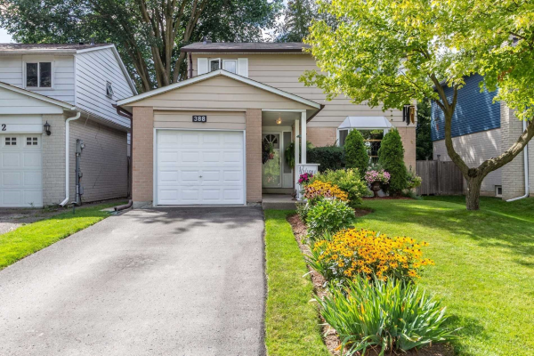 388 Terry Dr, Newmarket